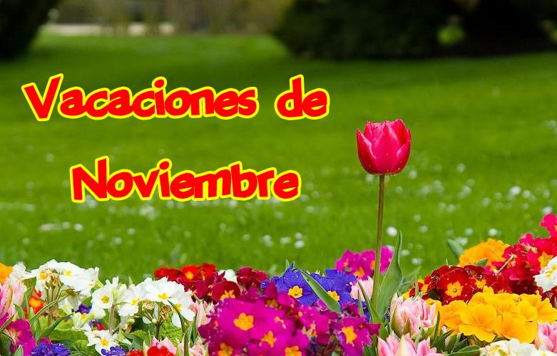 vacaciones de noviembre
